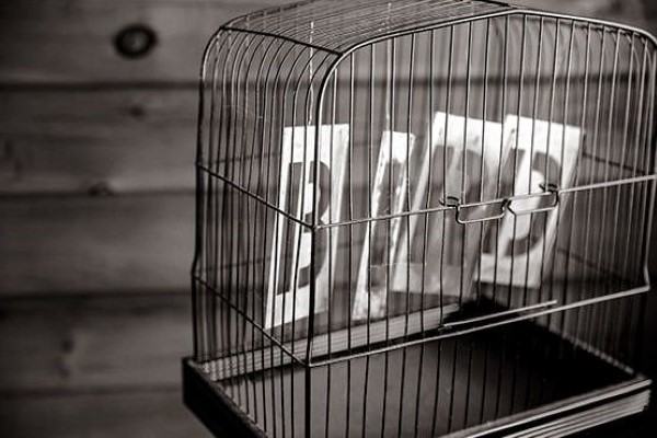 Bird Letters in Cage Free Photo