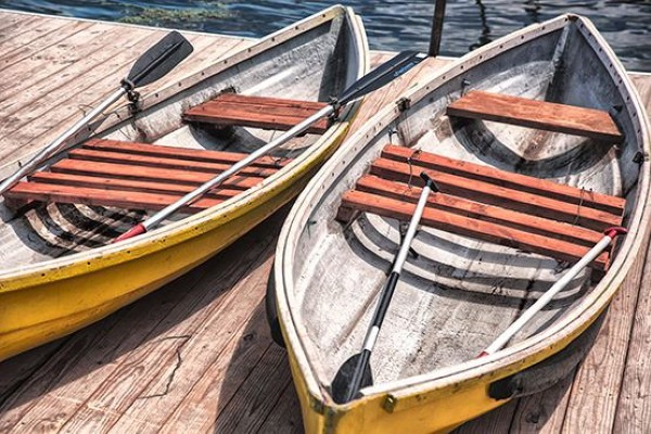 Rowing Boats Free Photo