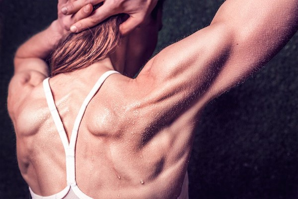 Girl Muscles Free Photo