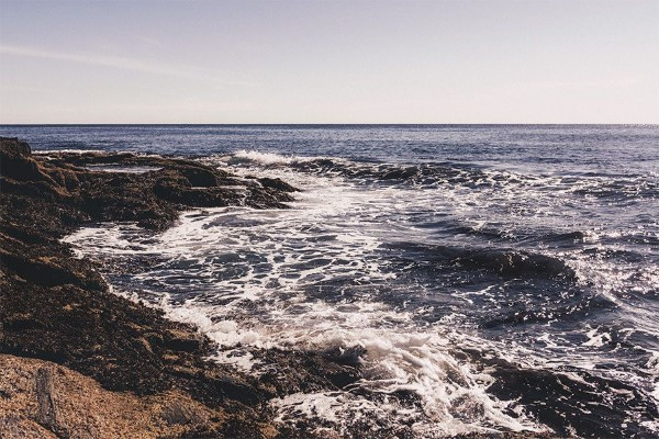 Ocean in the Summer Free Photo