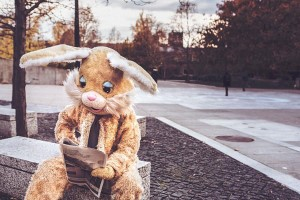 Bunny Costume Free Photo