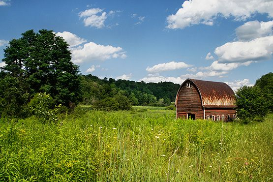 Rural Barn Free Photo