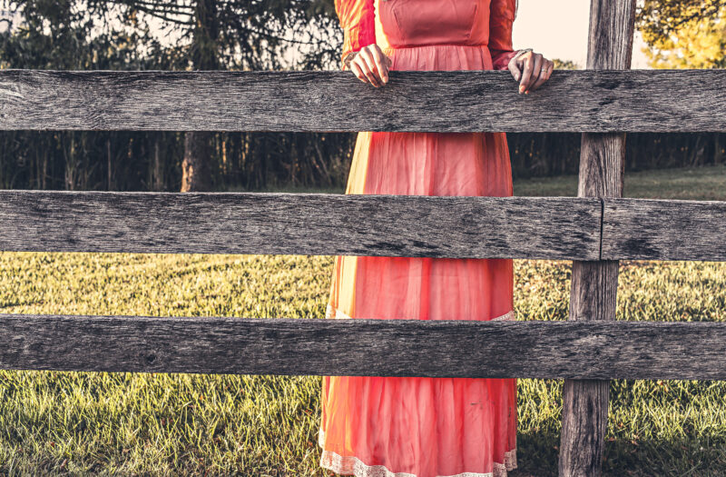 Red Dress & Wood Fence Free Stock Photo