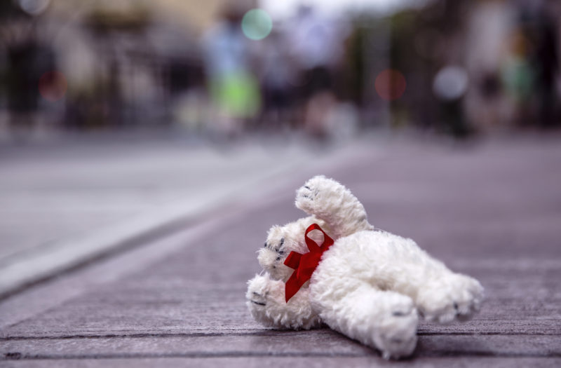 Fallen Teddy Bear Free Photo