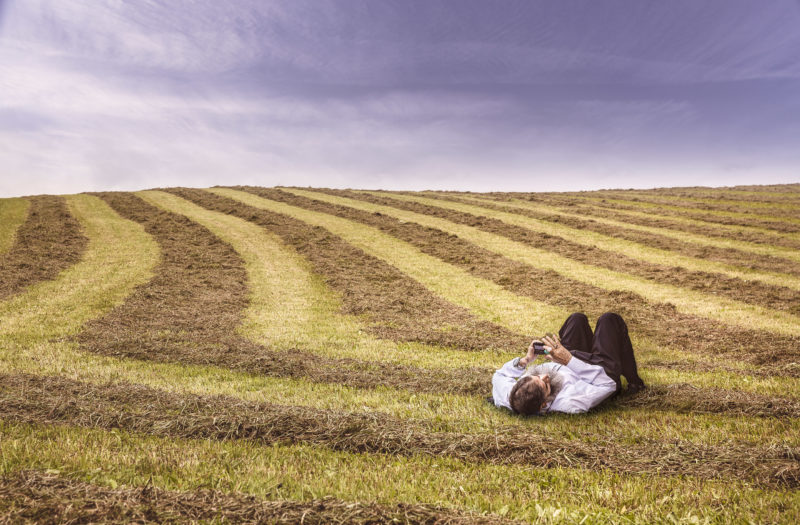 Relaxing in Farm Field Free Photo