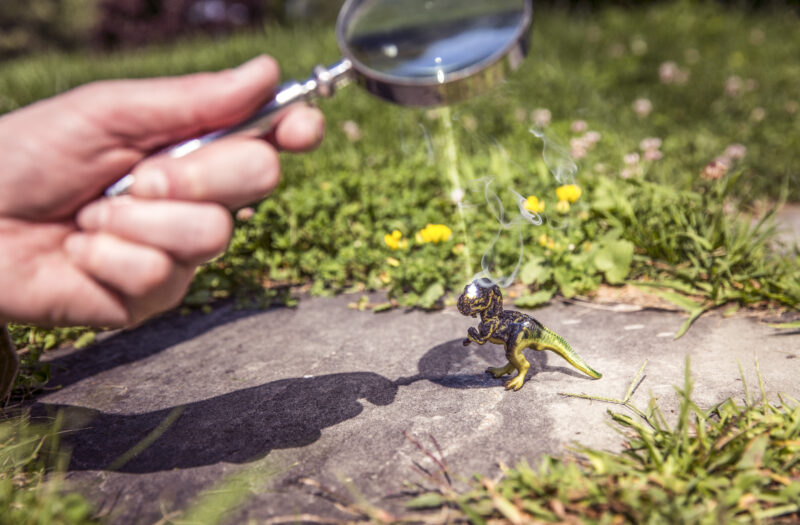 Magnifying Glass Free Stock Photo