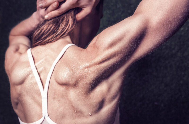 Girl Muscles Free Stock Photo