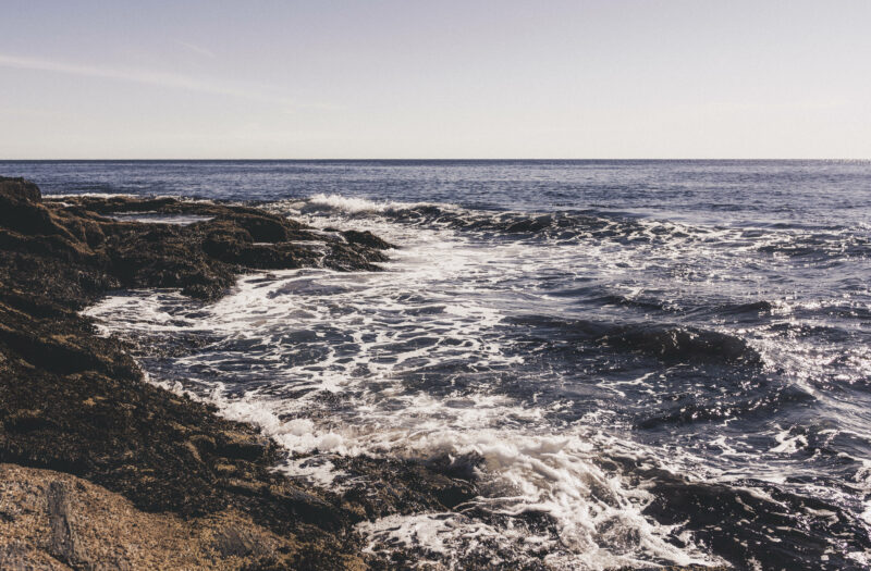 Ocean in the Summer Free Stock Photo