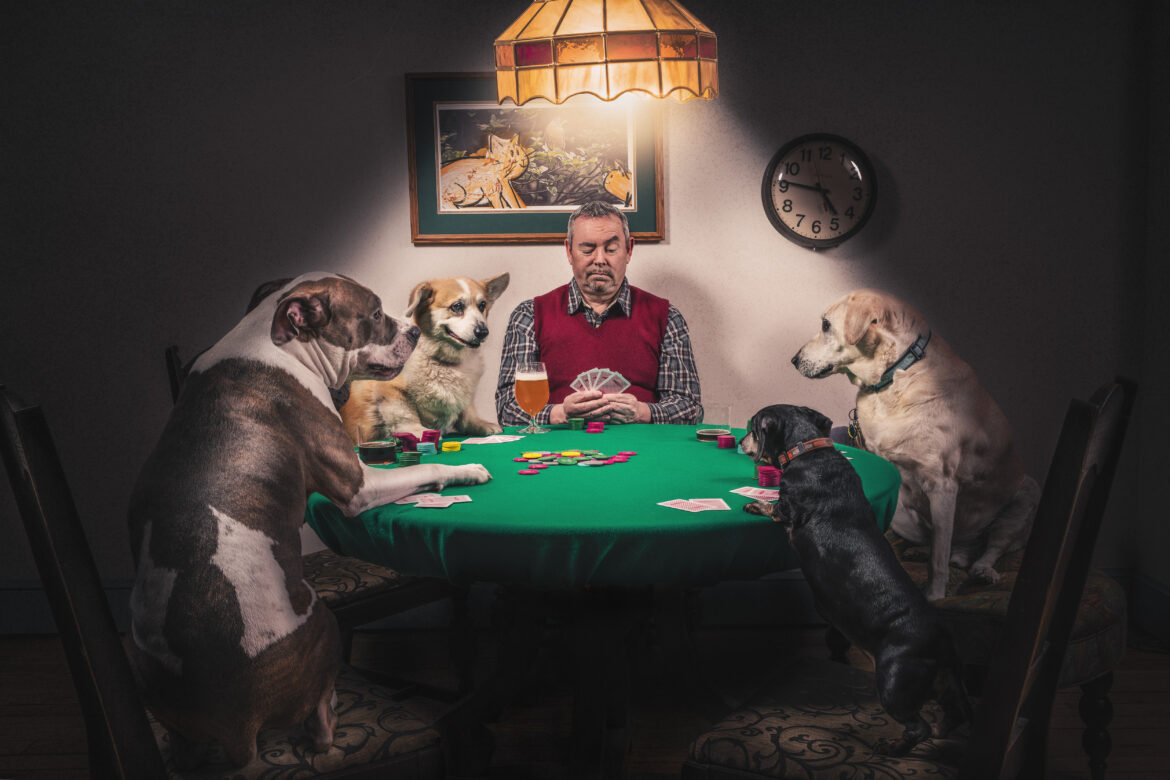 Man & Dogs Playing Cards Free Stock Photo