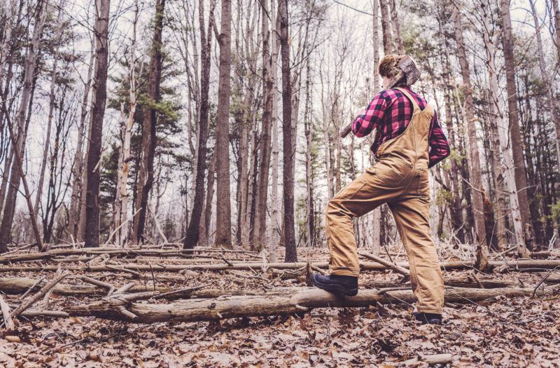 Lumberjack in Woods Free Photo
