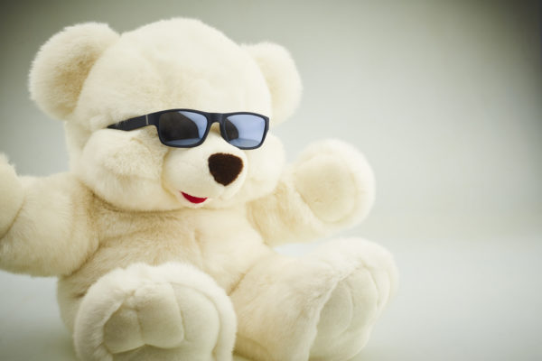 Cool Bear Free Photo