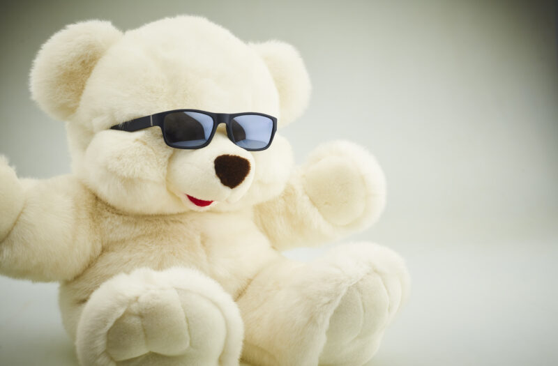 View Cool Bear Free Stock Image