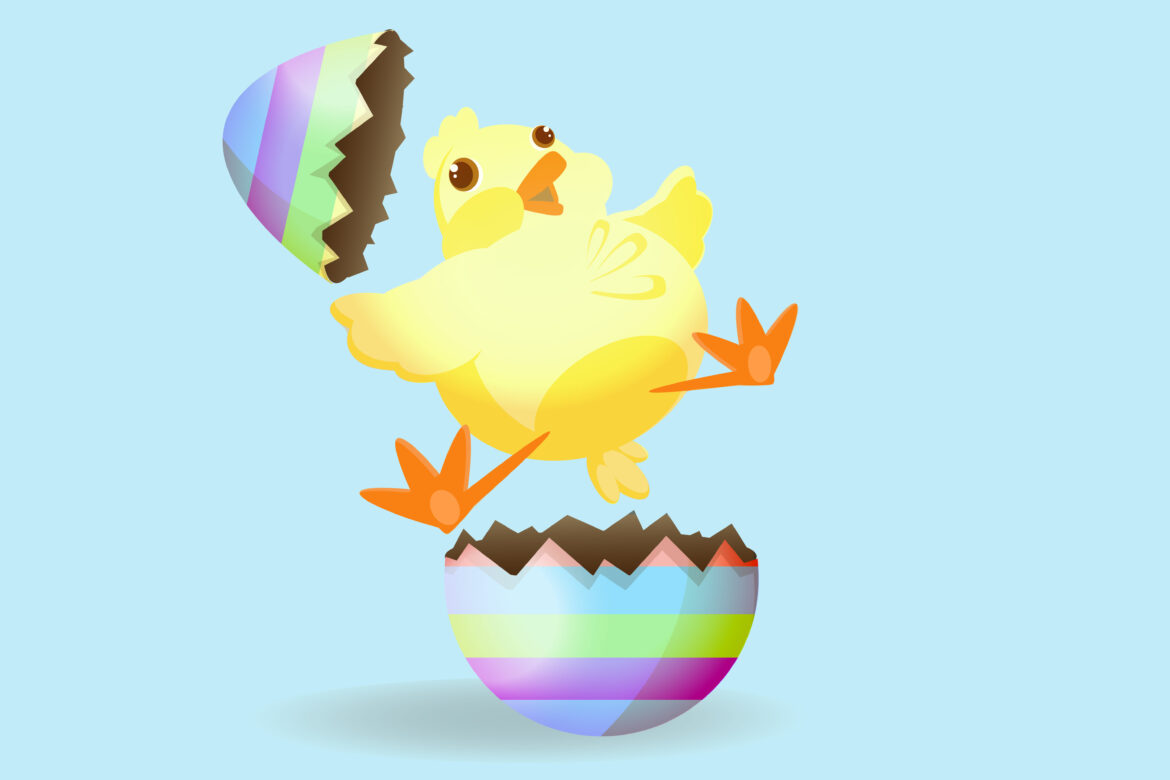 Baby Easter Chick Free Stock Photo