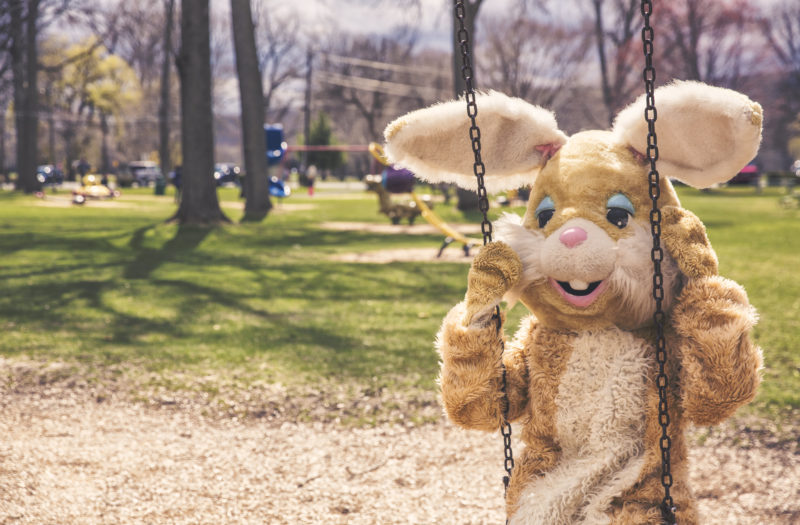 Rabbit Costume Free Photo
