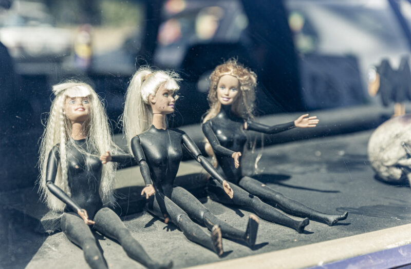 View Toy Female Dolls Free Stock Image