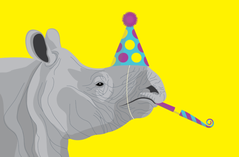 Rhino Party Free Stock Photo