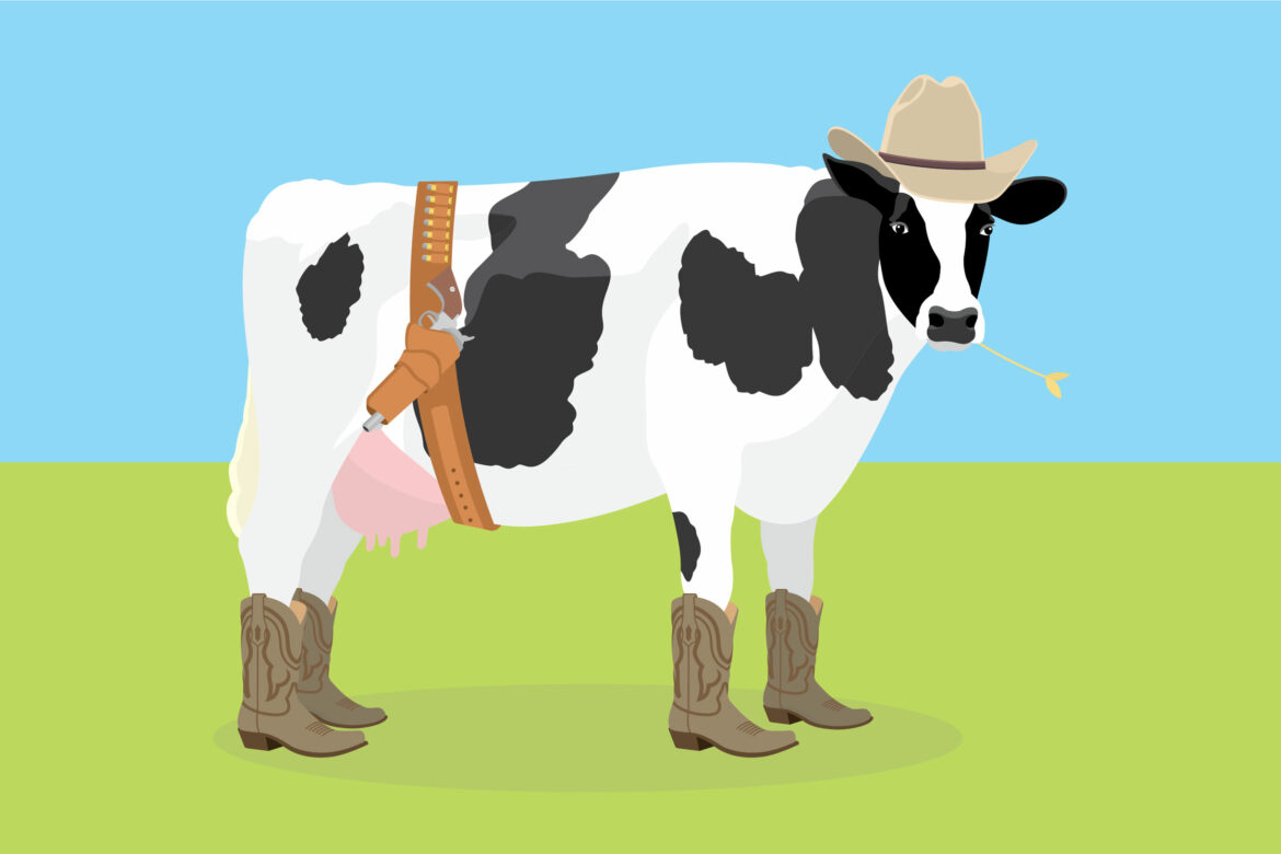 Silly cow Free Stock Vector