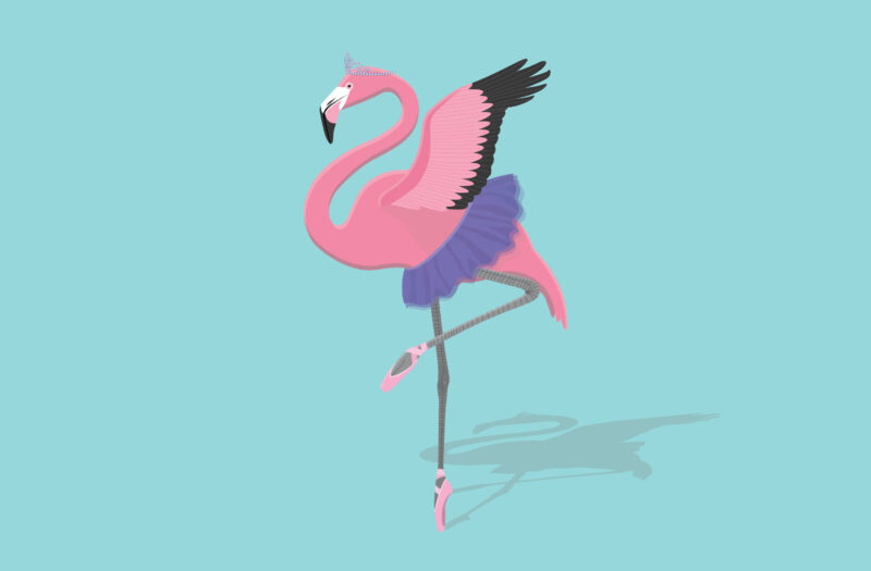 Pink Flamingo Free Vector
