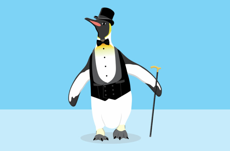 Funny Penguin Free Stock Vector