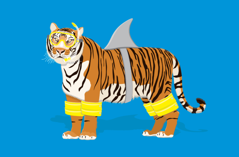 Tiger Free Vector Free Photo