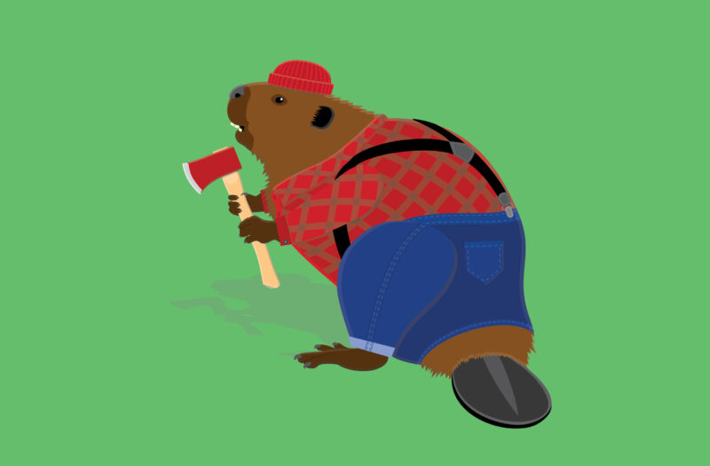 Beaver Cartoon Free Stock Photo