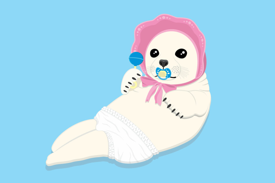 Baby Seal Free Stock Vector