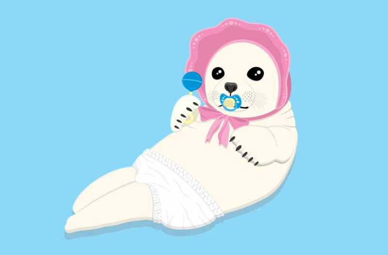 View Baby Seal Free Stock Vector