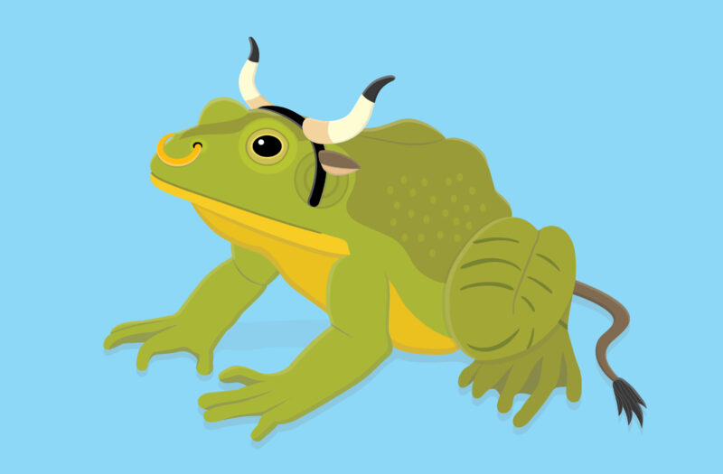 View Bull frog Free Stock Vector